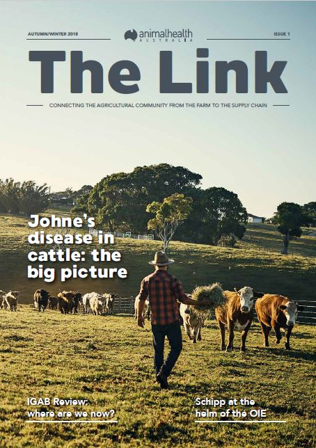 The Link front cover